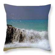 Palette Of God Throw Pillow by Karen Wiles