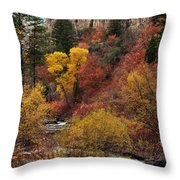 Palisades Creek Canyon Throw Pillow