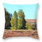 Palisades Idaho Throw Pillow