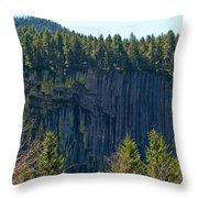 Palisades View Point Throw Pillow