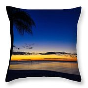 Palm After The Sun Is Gone Throw Pillow