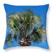 Palm Against Blue Sky Throw Pillow
