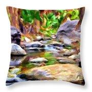Palm Canyon Trail Throw Pillow