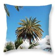 Palm City Throw Pillow