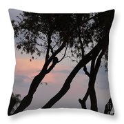 Palm Haven Throw Pillow