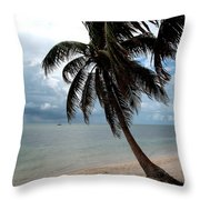 Palm On The Beach Throw Pillow