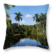 Palm Reflection And Shadow Throw Pillow