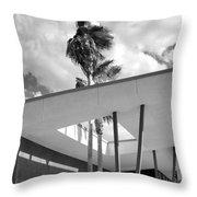 Palm Springs Animal Shelter Palms Bw Palm Springs Throw Pillow