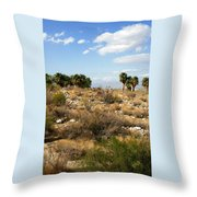 Palm Springs Indian Canyons View  Throw Pillow