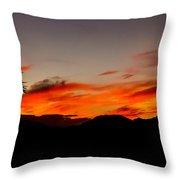 Palm Sunrise Throw Pillow