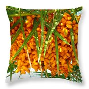 Palm Tree Fruit 1 Throw Pillow