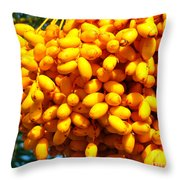 Palm Tree Fruit 2 Throw Pillow