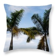 Palm Tree In Costa Rica Throw Pillow