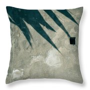 Palm Tree Shadow On Wall With Holes Throw Pillow