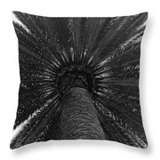 So Cal Umbrella Throw Pillow