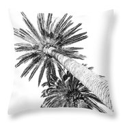 Palm Tree White Throw Pillow