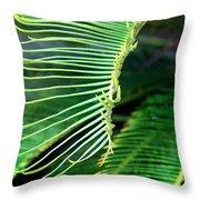 Palme Cycas Throw Pillow
