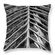 Palms E The Other Way In Black And White Throw Pillow