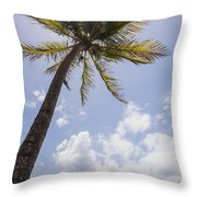Palms Trees Along Luquillo Beach In Puerto Rico Throw Pillow