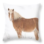 Palomino Horse In The Snow Throw Pillow