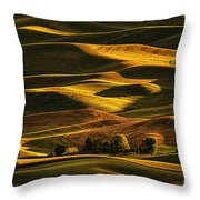 Palouse Sunset From Steptoe Butte Throw Pillow