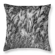 Pampas Grass Monochrome Throw Pillow