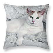 Pampered Pet Throw Pillow