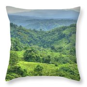 Panama Landscape Throw Pillow