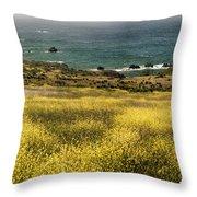 Panarama Spring On Califronia Coast By Denise Dube Throw Pillow