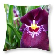 Pancy Orchid Throw Pillow