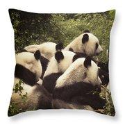 Pandamonium Throw Pillow by Joan Carroll