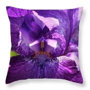 Pandora's Purple Throw Pillow
