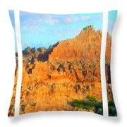 Panels Of A Canyon Throw Pillow