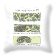 Panels Show The Progressive Development Throw Pillow