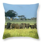 Panorama African Elephant Herd Endangered Species Tanzania Throw Pillow