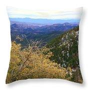 Panorama Emory Pass Vista Nm Throw Pillow