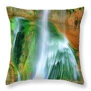 Panorama Lower Calf Creek Falls Escalante Nm Utah Throw Pillow