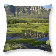 Panorama Of Windy Mountain Wyoming Throw Pillow