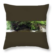 Panorama Of Wolf Creek At Letchworth State Park Throw Pillow