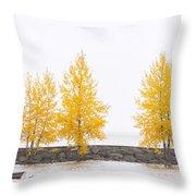 Panorama Tree Throw Pillow