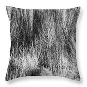 Panorama Winter Trees B And W Throw Pillow