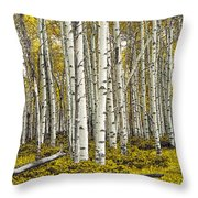 Panoramic Birch Tree Forest Throw Pillow