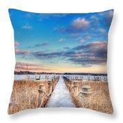 Panoramic Crooked Lake Throw Pillow