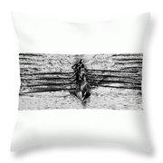 Panoramic Rowing Throw Pillow
