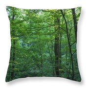 Panoramic Shot With Green Trees Throw Pillow