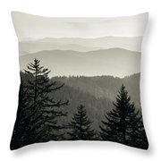 Panoramic View Of Trees With A Mountain Throw Pillow