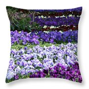 Pansy Field Throw Pillow