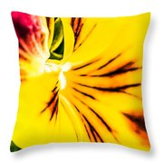 Pansy Flower 1 Throw Pillow