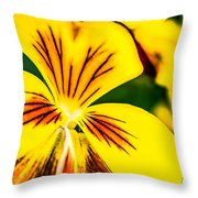 Pansy Flower 2 Throw Pillow