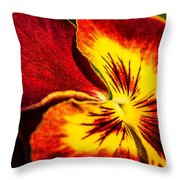 Pansy Flower 5 Throw Pillow